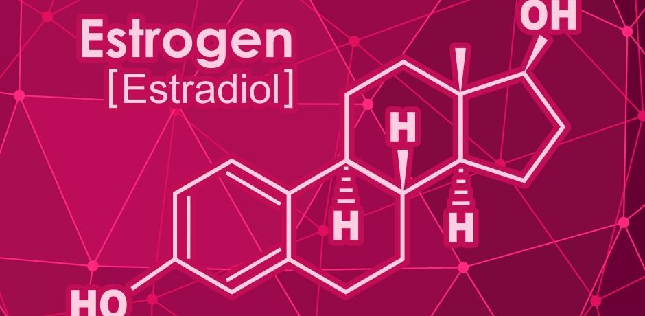 estrogen_dlya_organizma
